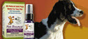 Joint Health for Cats an Dogs 12-4-2013 7-17-03 PM